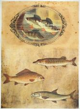 Rice Paper for Decoupage Decopatch Scrapbook Craft Sheet Vintage Hobby Fishing 2