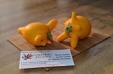 Nipple Fruit - Solanum mammosum - 10+ seeds - EXTRAVAGANT FRUIT!