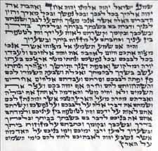 Lot 5 Kosher 7cm Mezuzah 2.8 Inch Scroll klaf Mezuza Parchment jewish symbols