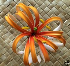 Hawaiian Double Petals Spider Lily Flower PinUp Girl Wedding Hair Pick Orange