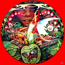 """Spyro Gyra   picture disc record 12"""" Morning Dance Montreux Festival Promo"""
