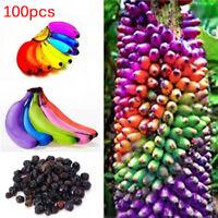 100pcs Rainbow Banana Seeds Delicious Bonsai Fruit Plants Home Garden Decor BR