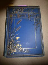 1882 OUR NATIVE LAND American Scenery & Places Illustrated