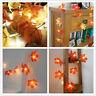 10 LED Fall Maple Leaf Fairy Lights String Autumn Leaf Lamp Garland Wedding XMAS