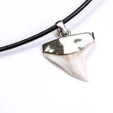 25-27mm Bull shark tooth hand capped 925 s silver men's gift present pendant s16