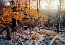 "On the Trail Deer Buck Art Print By Greg Alexander  Image 10""  X 7 """