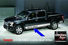 ROCKER PANEL DECAL STRIPE Fits FORD F-150 Lariat XL XLT STX Platinum King Ranch