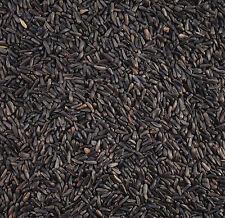 25KG  MALTBYS STORES NYJER NIGER SEED FOR WILD BIRD FEEDING