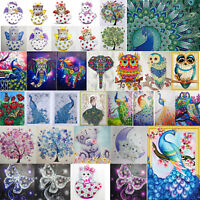 5D DIY Special Shape Diamond Painting Cup Cat Cross Stitch Embroidery Mosaic Art