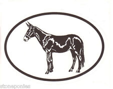 Equine Breed Oval Vinyl Decal Black & White Sticker - Mule