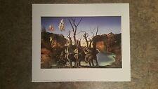 Swans Reflecting Elephants by Salvador Dali  Museum Art Print