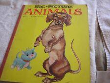 Big-Picture Animals Grosset Dunlap 1957