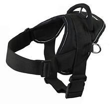DT Fun Works Dog Harness Black w/ Grey Trim Size XS W/ Patch - PGMS DO NOT PET