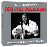 Big Joe Williams - Essential [New CD] UK - Import