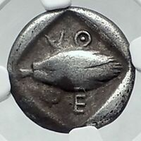 PHERAI in THESSALY Thessalian League  ARCHAIC 480BC Silver Greek Coin NGC i78443