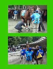 3 AFLEET ALEX 2005 5 x 7 Preakness & 8 x 10 Belmont Stakes Horse Race Photos #2
