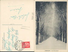 CHERASCO,VIALE DEI PIOPPI,ANIMATA,VIAGGIATA 1942 -F.P.PIEMONTE(CN)N.43964