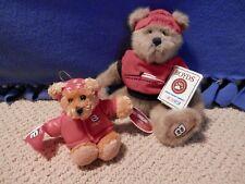Boyds Bears Nascar Dale Earnhardt Jr Bear & Dale Jr Ornament