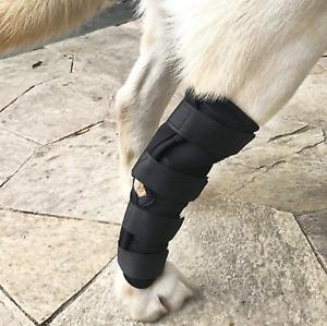 Dog Leg Brace Knee Cast Canine Rear Hock Luxating Patella Joint Protection Wrap
