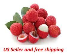 10 Lychee Fruit Tree Seeds Nephelium Litchi Tasty Viable Tropic Plants in Garden