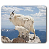 Computer Mouse Mat - Baby Mountain Goat Office Gift #12621