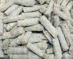 "Blue Sage Smudge Sticks Bulk Lot at Wholesale (4"") for Cleansing"