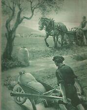 K0380 Contadini - Carriola in legno - Cavallo - Campo - Stampa antica