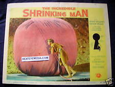 INCREDIBLE SHRINKING MAN MOVIE POSTER-LC-HORROR-SC IFI,FAMOUS MONSTERS,MONSTER