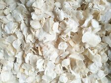 Biodegradable Petal Confetti | Ivory Cream Wedding Confetti, Real Petal Confetti