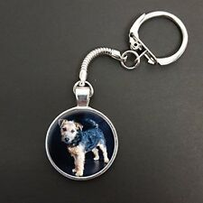 Lakeland Terrier Dog Pendant On A Snake Keyring Ideal Birthday Gift N35