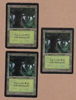 MTG - 4X Forest (C) X3 - Beta Edition - 1 Fine/Played & 2 VH - 3 Cards Lands