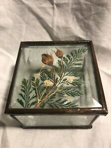 Beveled Glass Pressed Dried Mini Roses Flowers Mirrored Trinket Box Signed