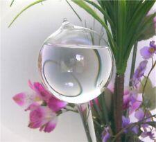 5 Stück kleine Durstkugel Bewässerungskugeln Wasserspender für Blumen Qualität