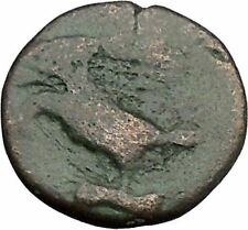 Akragas in Sicily 338Bc Zeus Rabbit Hare Authentic Ancient Greek Coin i45257