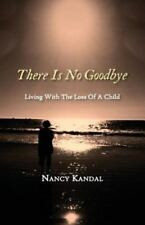 There Is No Goodbye: Living with the Loss of a Child (Paperback or Softback)