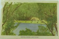 .BEROWRA WATERS , NEAR SYDNEY NEW SOUTH WALES EARLY 1900'S POSTCARD.