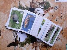 Komplett-Satz 1-180 + Sammelalbum; WWF-Tierbilder EDEKA / MARKTKAUF