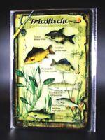 Blechschild Fische Friedfische Angeln Angler Fischer Metall 30 cm,Metal Shield