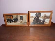 Black Labrador Retriever Puppies Wall Pictures