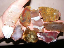 Top Agate Slab Sampler - Agua Nueve, Priday, Red Lace, More.. - 213 Grams  Cool!