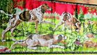 Vintage Hunting Pointer Dog And Gamefowl Tapestry Bird Dog Hunting Camp Mancave