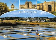 B50310 Guerande moulin a vent wind mill multi vues   france