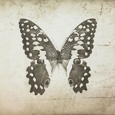 3 x Single Paper Napkins For Decoupage Craft Tissue Sepia Black Butterfly  M125