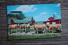 Vintage Unused Jenks Oklahoma Postcard Farm Ranch Cattle Livestock Barn Tulsa OK