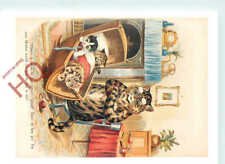 Picture Postcard_ Louis Wain, Cats, Tas Collectables