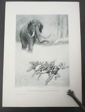 THE GREAT AMERICAN ELEPHANT, 1890 Gebbie & Husson Photogravure