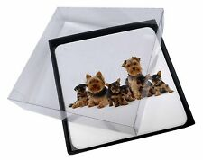 4x Yorkshire Terrier Dogs Picture Table Coasters Set in Gift Box, AD-Y11C