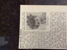 m10-9c ephemera 1905 picture miss billie burke