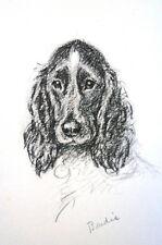 """Lucy Dawson 1946 SAD LOOKING IRISH SETTER """"Birdie"""" Vintage DOG Print Matted"""