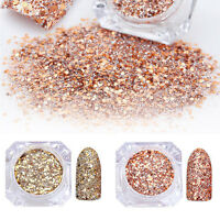 2box/set Nail Art Powder Glitter Dust Acrylic UV Gel Decoration Tips Rose Gold